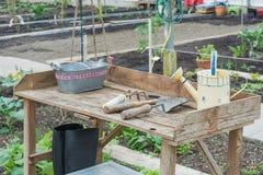 Przydziały w szklarni z ogrodowymi narzędziami Zdjęcia Royalty Free