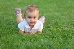 przygląda się jak trawy zieleń Zdjęcie Royalty Free