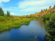 Przyglądająca Up rzeka Zdjęcia Stock