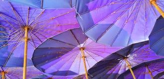 Przyglądający przy fiołkowym parasol up Zdjęcia Stock