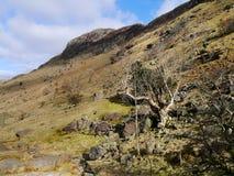 Przyglądający up niewygładzony wzgórze sierżanta ` s Crag zdjęcia stock