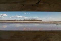 Przyglądający za kaczki storze przy niebem, obszarami trawiastymi i bagnami na opóźnionym dniu w Crex łąk Wi pięknymi, zimy, wios obraz royalty free
