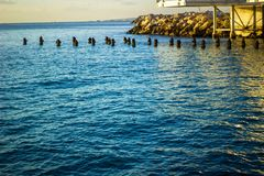 Przyglądający za wybrzeżu nad Śródziemnomorskim głębokim błękitnym morzem od obrazy royalty free