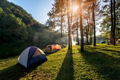 Przygoda namiot pod sosnowy lasowy pobliski wodny plenerowym w, Obozować i, sosnowy lasu park, Mae Hon Fotografia Stock