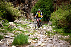 Przygoda roweru górskiego przez cały kraj rywalizacja Zdjęcia Royalty Free
