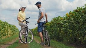 Przygodny spotkanie młodzi ludzie z bicyklami zdjęcie wideo