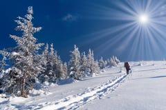 przygody zima Zdjęcie Stock