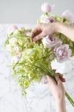 przygotowania kwiat Zdjęcie Royalty Free