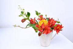 przygotowania kwiat Zdjęcia Stock