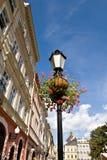 przygotowania kwiatu lampy ulica Obraz Stock