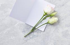 Przygotowania kwiaty i kartka z pozdrowieniami na szarość drylujemy tło Zdjęcie Royalty Free