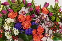 Przygotowania kwiaty od róż, orchidei i tulipanów, Obrazy Royalty Free