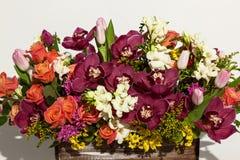 Przygotowania kwiaty od róż, orchidei i tulipanów, Obraz Royalty Free