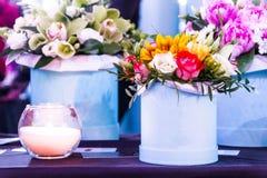 Przygotowania kwiaty Sceneria kwiaty Kwiaty w dekoracyjnym garnku Zdjęcie Stock