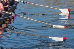 Przygotowanie dla dużego rasy pre regatta Fotografia Royalty Free