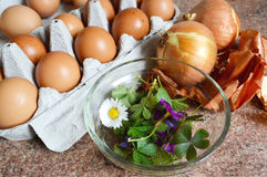 Przygotowanie dla naturalnej kolorystyki Wielkanocnych jajek Obrazy Stock
