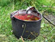 Przygotowanie lingonberry herbata przy stosem Brusznica w starym dęciaka kapeluszu Kolekcja czerwone borówki w tajdze obraz stock