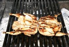 Przygotowanie przepiórka na grillu Fotografia Royalty Free