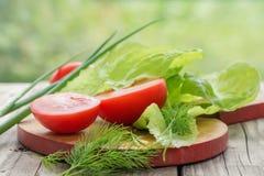 Przygotowanie sałatka z pomidorami Obraz Stock