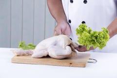 Przygotowany kulinarny surowy kurczak fotografia royalty free