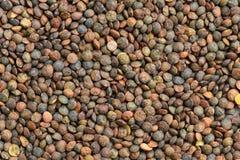 Przygotowany lentile organicznie dla gotować obraz stock