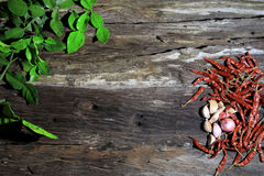 Przygotowywać dla ziele i pikantność na drewnianej desce fotografia stock