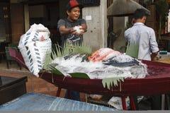 Przygotowywać rybią gablotę wystawową obraz stock