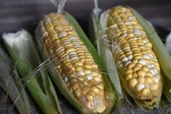 Przygotowywa kukurudzy dla gotować dla gościa restauracji Fotografia Stock
