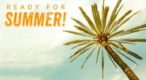 Przygotowywający dla lata drzewka palmowego i teksta przeciw pogodnego jasnego nieba panoramicznemu tłu Pojęcie dla wakacje, trop Fotografia Stock