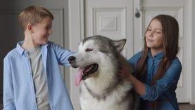 Przyjaźń szczęśliwy rodziny dziecko lub miłość zwierzęcia domowego zwierzę psi i uśmiechnięty zdjęcie wideo