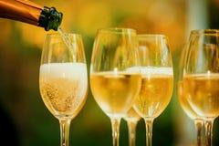 Przyjaźni świętowanie Pije otuchy szczęścia pojęcie Obrazy Royalty Free