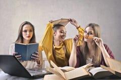 Przyjaciół studiować obrazy stock