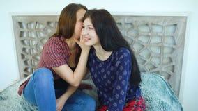 Przyjaciel kobiet blondynka i brunetki siedzący łóżko szepcze w uszatych sekretach i ono uśmiecha się zbiory wideo