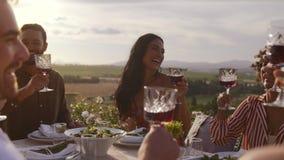 Przyjaciele wznosi toast z napojami przy przyjęciem zbiory wideo