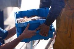 przyjazdu ryba port Zdjęcia Royalty Free