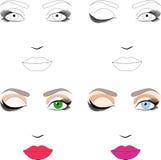 przykładów makeup próbek plan ilustracja wektor