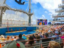 Przylądek Canaveral, usa - Maj 03, 2018: Ludzie siedzi przy przedstawieniem przy Aqua teatru amfiteatrem przy rejsu liniowa oazą Zdjęcie Stock