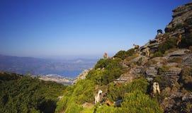 przylądek Corsica fotografia stock