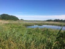 Przylądek może NJ jezioro i obrazy stock