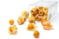 Przylądka agrest & x28; Pęcherzycy peruviana& x29; w szklanym pucharze na bielu plecy Zdjęcia Stock