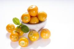 Przylądka agresta owoc na białym tle, Zdjęcia Royalty Free