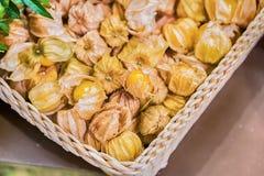 Przylądka agresta pęcherzycy owoc zmielona czereśniowa żywność organiczna Zdjęcia Stock