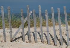 przylądka plażowy dorsz zdjęcie royalty free