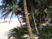 Przylądka wybrzeża plaża Obrazy Stock