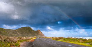przylądków pierwszoplanowych nadziei fynbos charakteru punktu prawa rezerwy Zdjęcia Royalty Free
