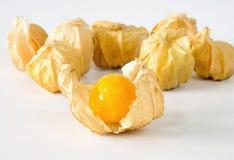 Przylądka agresta owoc Zdjęcia Stock