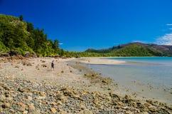 Przylądka Hillsborough park narodowy, Australia Zdjęcie Royalty Free