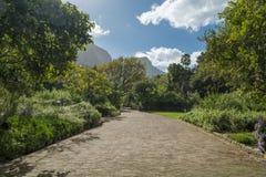 Przylądka miasteczka ogród botaniczny Zdjęcia Royalty Free
