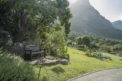 Przylądka miasteczka ogród botaniczny Obrazy Royalty Free