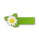 Przylepia etykietkę majcheru z kwiat stokrotką na bielu plecy lub oferuje, Fotografia Royalty Free